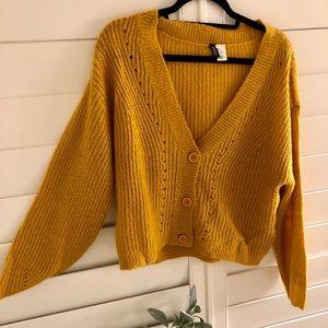 Mustard Yellow Crop Top Sweater
